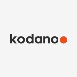 Akinių dėklas KODANO oranžinis